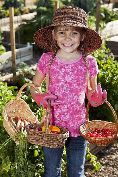 Garden Club Community Projects Project Gardeningknowhow Harvest