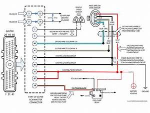 1995 Thunderbird Ecm Wiring Diagram