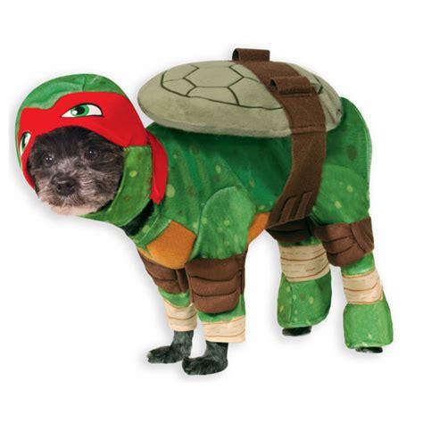 teenage mutant ninja turtle dog costume raphael baxterboo