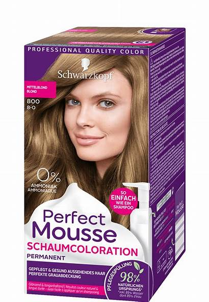 Mousse Perfect Mittelblond Crossing Animal Haarfarbe Blond