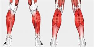 Lower Leg Pain  U2013 The Complete Injury Guide