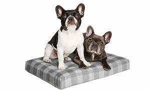 dog beds blankets petsmart With petsmart dog beds for large dogs