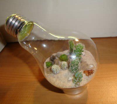 light bulb terrarium desert terrarium inside a lightbulb