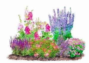 Garten Pflanzen : pflanzenset romantischer garten 6 pflanzen otto ~ Eleganceandgraceweddings.com Haus und Dekorationen