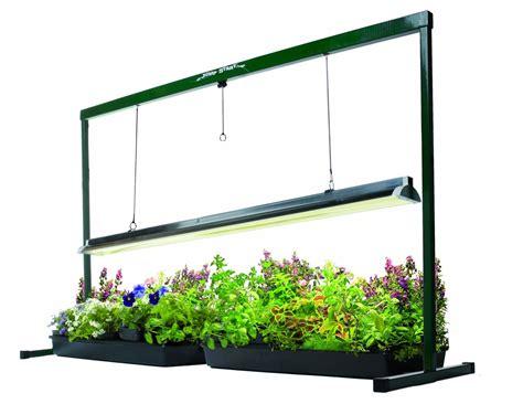 best grow lights for seedlings hydrofarm 4 feet jump start t5