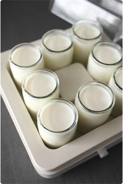 cuisine au thé tout sur les yaourts maison et le choix d 39 une yaourtière