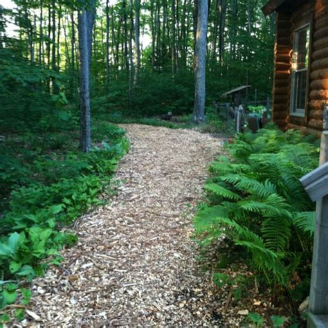 wood chip path through the woods could do this after we