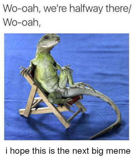 Halfway There Meme - 25 best memes about were halfway there were halfway there memes
