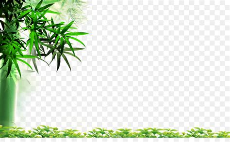 Tree Wallpaper Png by Hd Bamboo Leaves 1 Png 4000 2413 Free