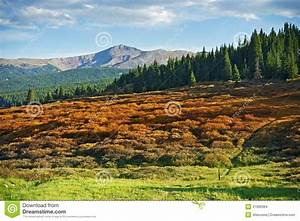 Colorado Stock Images - Image: 31906984