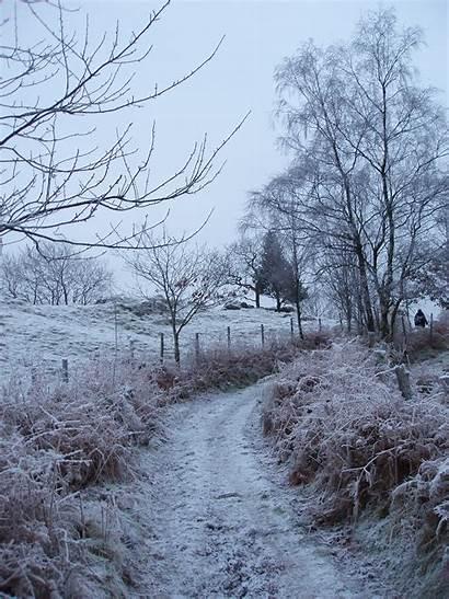 Winter Country Scenes Lane Frosty Scene Background
