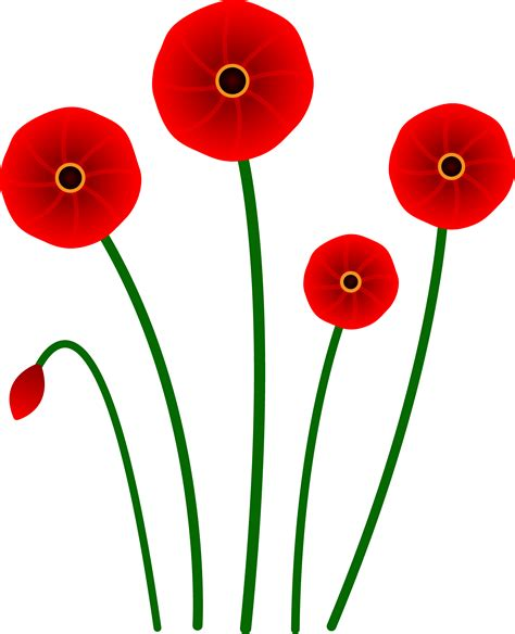 poppy pictures free use poppy clip art cliparts co