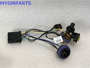 Chevy Tahoe Suburban Avalanche Headlight Wiring Harness