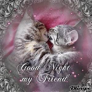 Good night my dear friend Picture #128331267 | Blingee.com