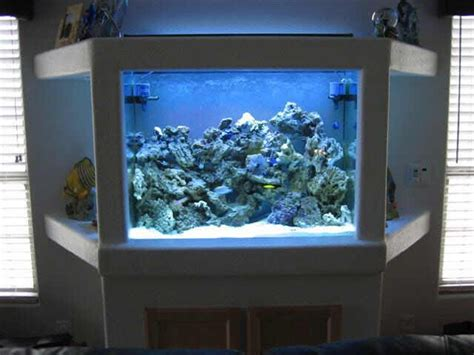 image detail for fish tank decorating ideas buy fish tank