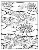 Coloring Waterfall Pond Pages Colouring Koi Ponds Fish Adult Drawing Fishing June Getcolorings Printable Books Kuvahaun Haulle Tulos Sheets Easy sketch template