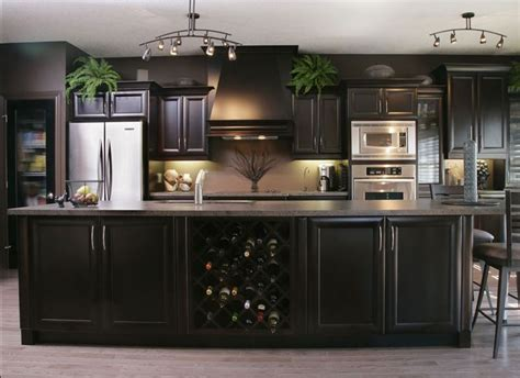coffee color kitchen cabinets world expresso cabinets espresso colored kitchen 5522