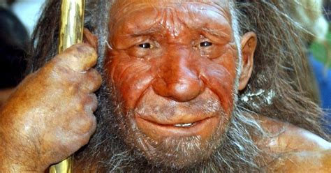 Promiscuous Early Humans Interbred 'multiple Times' In