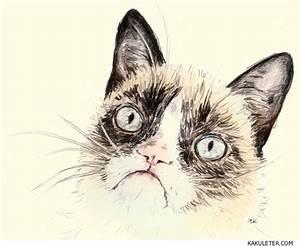 Grumpy cat face illustration | [ illustration ] | Pinterest