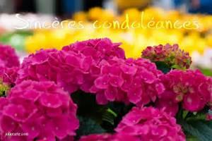 Cartes Virtuelles Sinceres Condoleances Joliecarte