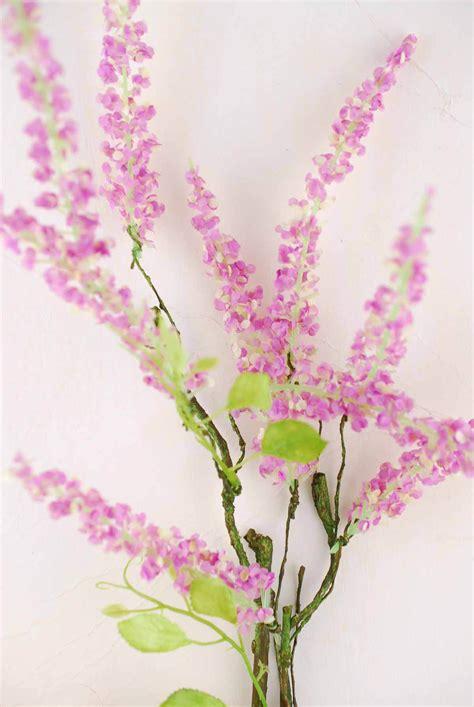 amaranthus spray pink