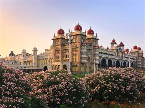 20 Breathtaking Photos Of Palaces In India  Business Insider