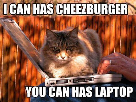 Cheezburger Meme - memes academia s weird new frontier contemporary culture creative production
