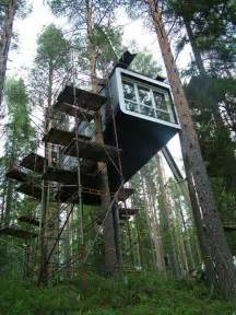 livingroom world magic tree house in the middle of a fir forest and few