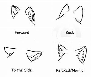 How to draw wolf ears | AnnaGrace's pins | Pinterest ...