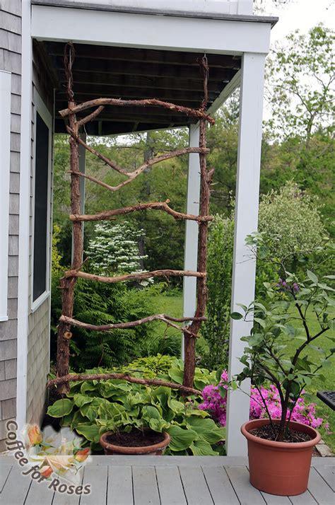 Garden Trellis by 24 Best Diy Garden Trellis Projects Ideas And Designs