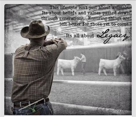 animal meme  favorite memes farm quotes cowboy