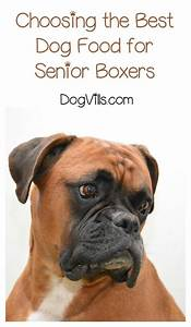 7 best images about cats and dogs and other pets on With best senior dog food