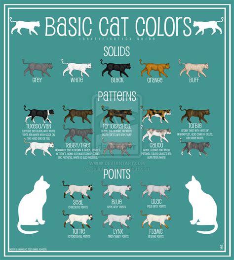 cat colors cat color chart by paintbean on deviantart