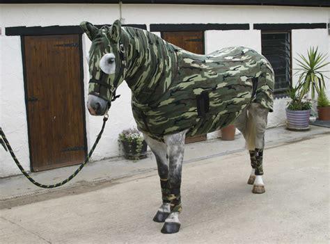 equine fashion statements horse nation