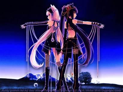 Neko Wallpapers Anime Paradise