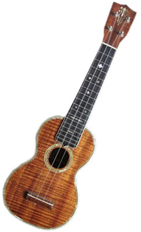 ukulele collector andy roth  interview  collectors