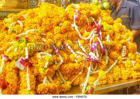 marigold garlands for sale marigold garland stock photos marigold garland stock images alamy