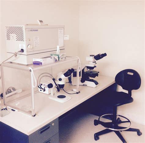 northeast laboratory services  obtains asbestos