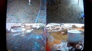 Sheep  Lambing Barn Setup