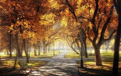 Park Central Background Autumn Sevilla Fall Wallpapers