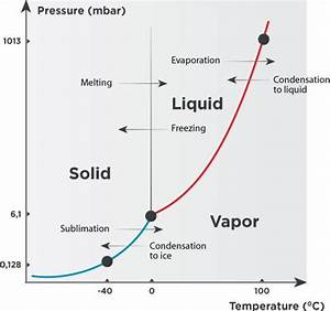 The Lyophilization Process