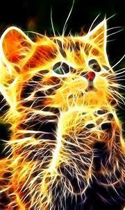 Free download Cool Animal Backgrounds WallpaperSafari Cool ...