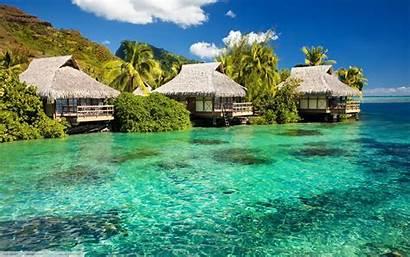 Tropical Water Nature Plants Landscape Sea Desktop