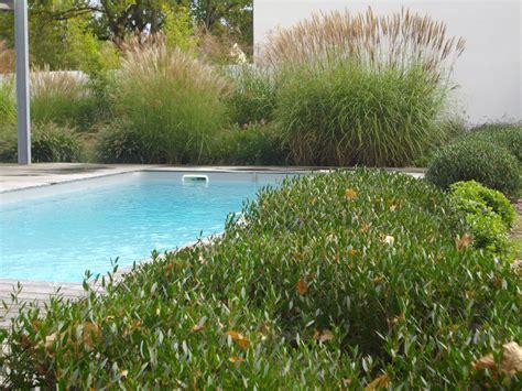 bureau petit piscine terrasse bois muret portillon allee graminee