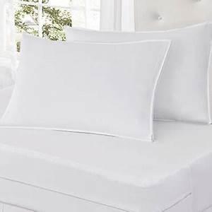 bed bug blocker 2 pack pillow protector queen bed With bed bug blocker pillow protector