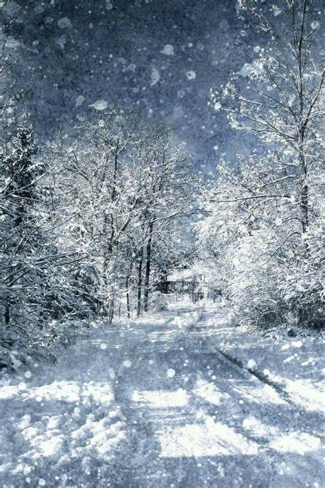 Best 25+ Winter Scenery Ideas On Pinterest  Beautiful Scenery, Scenery Photography And Scenery