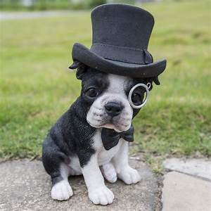 Hi-Line Gift Ltd Boston Terrier with Top Hat Statue