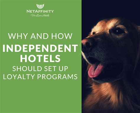 independent hotels  set  loyalty