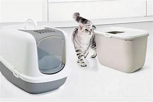 Litiere Chat Fermée : maison de toilette pour chat liti re ferm e auberdog ~ Melissatoandfro.com Idées de Décoration