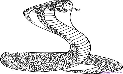 Cobra Free Colouring Pages